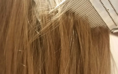 The Best Lice Treatment for Kids – How to Kill Lice Fast & Safely