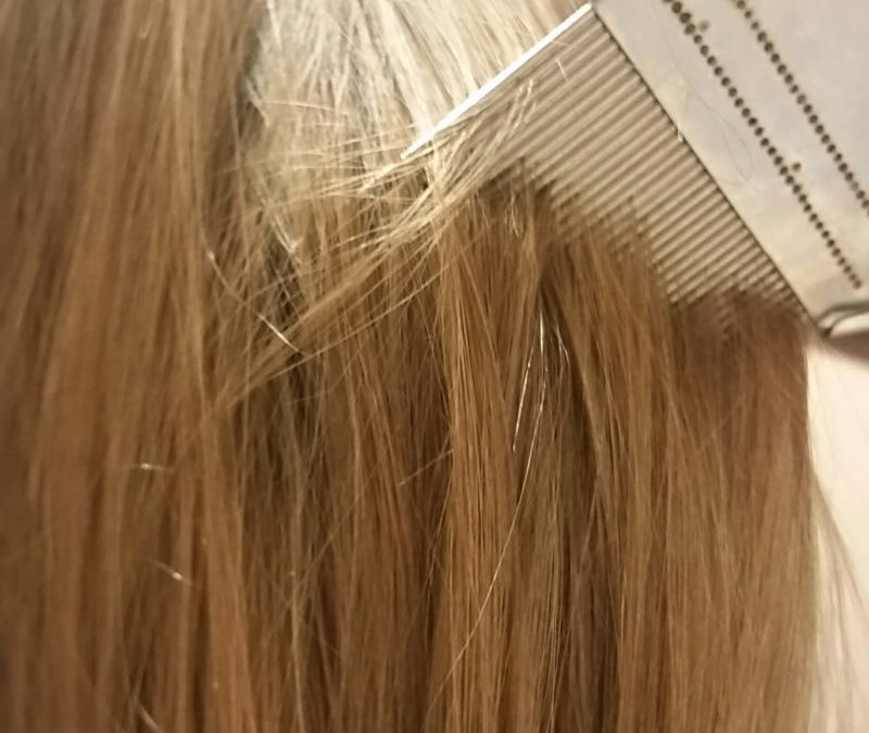 Are you looking for the best lice treatment for kids? Learn how to kill lice fast and safely. This 10 minute head lice remedy requires no pesticides on your child's head. Head lice removal and treatment is straight forward if you have the right tools and get cleaning. How to get rid of headlice simplified. @naturalsoapmom.com #lice #headlice #liceremedies #howtogetridoflice