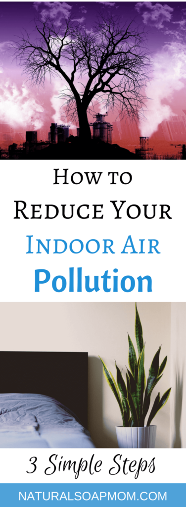 Do you have Indoor air pollution in your home? Unfortunately, we all do. Get the facts. Protect your families health with these 3 practical tips. Indoor air pollution comes from dozens of sources. Houseplants, like the Peace Lily, cleanses your air of unwanted VOC's and other chemicals. Products to clean the air in your home shouldn't cost big bucks. @naturalsoapmom.com #indoorairpollution #indoorplants #houseplants #indoor #plants #airpollution #healthy #voc #vocs #pollutionprevention #pollutionsolution #peacylily #mum