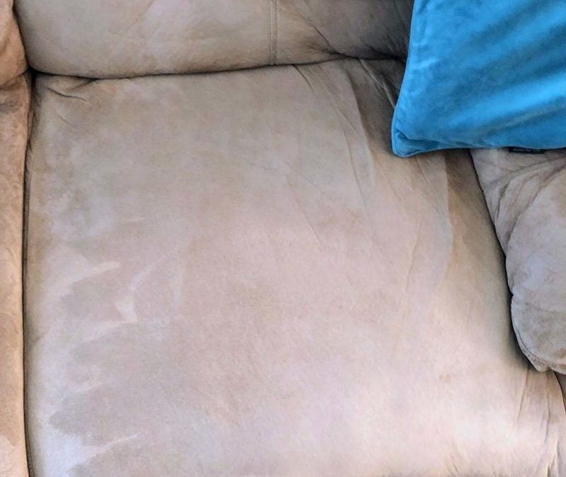 How to Get Stains Out of Couch Cushions (Banish Smells too)